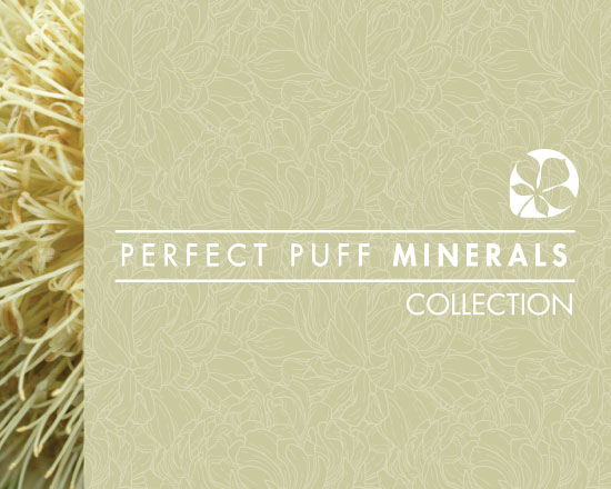 Alexami Perfect puff minerals collection